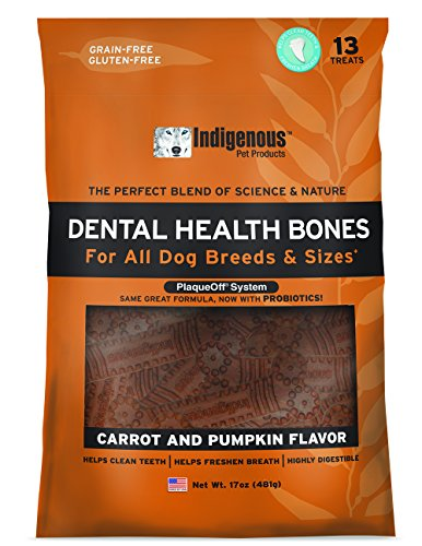 Indigenous Dental Health Bones Carrot Pumpkin Flavor ()