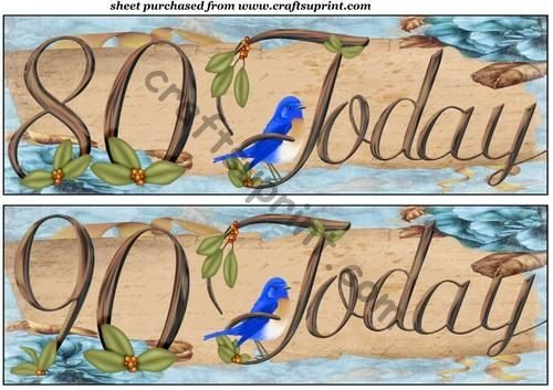 Blue bird 80th//90th birthday toppers by Sharon Poore