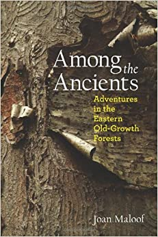Descargar It Mejortorrent Among The Ancients: Adventures In The Eastern Old-growth Forests Buscador De Epub