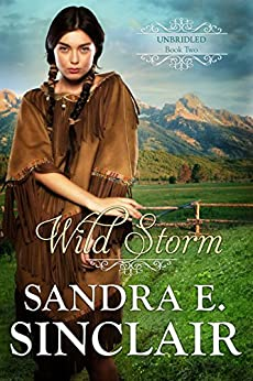 Wild Storm (The Unbridled  Series Book 2) by [Sinclair, Sandra E]