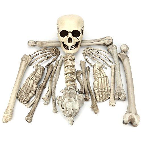 Hatop Realistic Skeleton Halloween Decor Scary Skull Man Bone Creepy Decorations - Realistic Joker Costumes