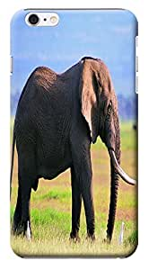 Fantastic Faye Cell Phone Cases For iPhone 6 The Cute Design With Elephant No.12