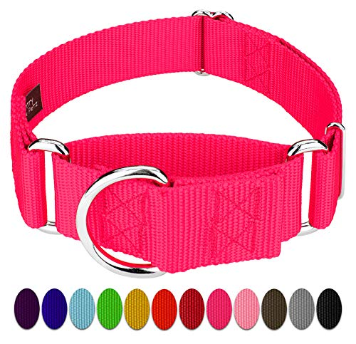 Country Brook Design - 1 1/2 Inch Martingale Heavyduty Nylon Dog Collar (Extra Large, 1 1/2 Inch Wide, Hot Pink)