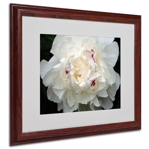 Kurt Shaffer Perfect Peony Framed Matted Canvas Art, 16 by 20-Inch (Peony Framed)