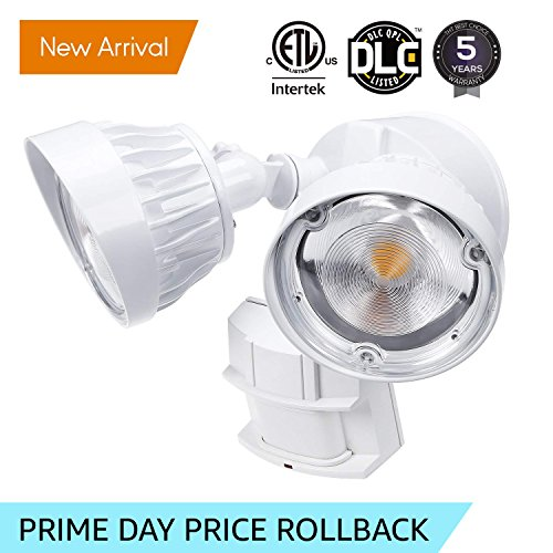 Dual Bright Led Security Light in Florida - 6