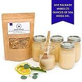 Happy Fox Organic Sea Moss | Premium Quality, Great