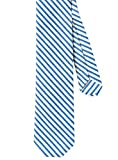 ''Stripe Republic'' Necktie