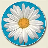 White Daisy Auto Coaster - absorbant stone Coaster for Your Car cup holder