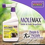 Bonide (BND690) - Molemax Mole & Vole Burrowing Animal Repellent, Ready to Spray Rodent Repellent (32 oz.)