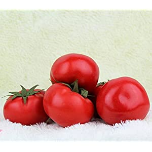 Gresorth 6pcs Artificial Lifelike Simulation Tomato Fake Fruit Vegetable Home Party Kitchen Decoration Food Toy 2