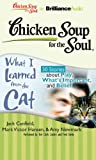 img - for Chicken Soup for the Soul: What I Learned from the Cat - 30 Stories about Play, What's Important, and Belief book / textbook / text book