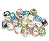 Ten (10) Pack of Assorted Flowers Glass Lampwork Beads for European Style Bracelets