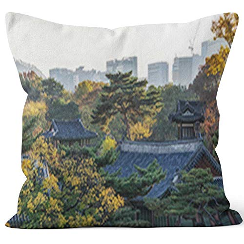 - Nine City Changgyeonggung Palace in Autumn Throw Pillow Cushion Cover,HD Printing Decorative Square Accent Pillow Case,40