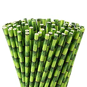 ALINK Bamboo Paper Straws, Pack of 100