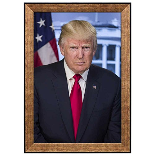 Portrait of Donald Trump (45th President of the United States) American Presidents Series Framed Art Print