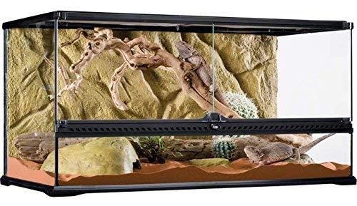 Gallon 100 Tank - Exo Terra Glass Terrarium, 36 by 18 by 18-Inch