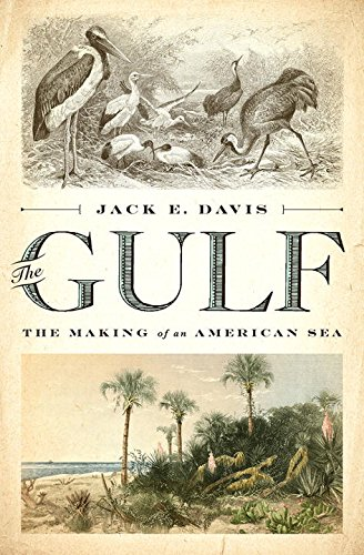 The Gulf: The Making of An American Sea cover