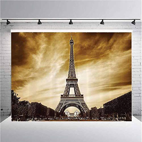 Paris Eiffel Tower Decor Photography Background Cloth Antique Landscape France Landmarks Vintage Picture Theme for Photography,Video and Televison 10ftx8ft