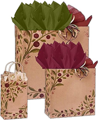 Gift Bags, Assorted Sizes, Bundled with Coordinating Tissue Paper and Raffia Ribbon (Tuscan Harvest)