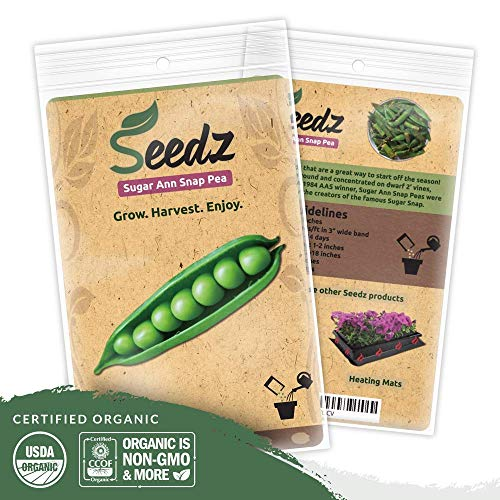 - Organic Pea Seeds (APPR. 225) Sugar Ann Snap Pea - Heirloom Vegetable Seeds - Certified Organic, Non-GMO, Non Hybrid - USA