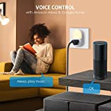 �NEW VERSION】Criacr WiFi Smart Plug Outlet Mini Socket with Night Light & Energy Monitoring Function, Control Devices from Anytime Anywhere, Voice Outlets Works with Alexa & Google Assistant(2 Packs)