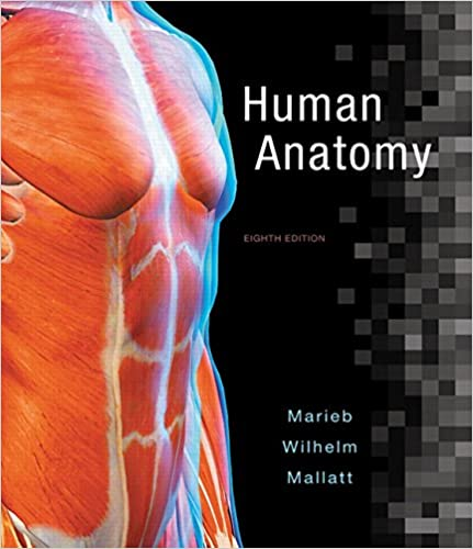 Amazon com: Human Anatomy Plus Mastering A&P with Pearson