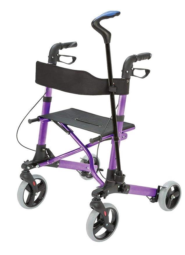 HealthSmart 501-5012-1110 - Andador de ruedas, estilo ...