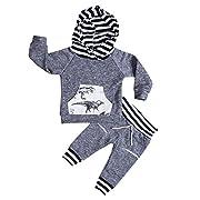 Aliven Toddler Infant Baby Boys Deer Long Sleeve Hoodie Tops Sweatsuit Pants Outfit Set,Dinosaur,0 - 6 Months