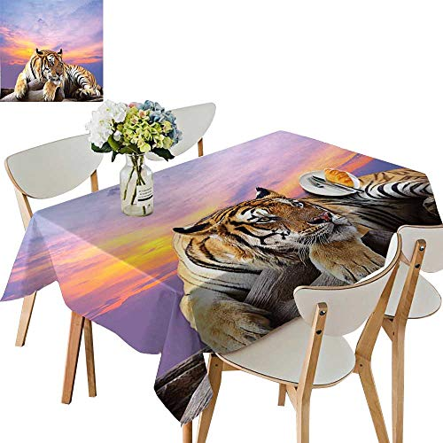 UHOO2018 Square/Rectangle Polyester Tablecloth Table Cover Tiger Lying On Wood Branch Blue Sky Colorful Sunset Pose Strpies Claws for Dining Room,50 x 72inch ()