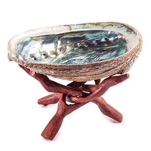 (Crystal Allies Specimens: Abalone Shell Smudging Kit with Wooden Tripod, Sage Stick & Tumbled Stone - Choose Your Own Healing Set (Stand & Shell Only))