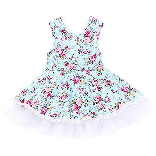 Aqua Floral Dress (KAKAKI Baby Girls Floral Lace Multi-Layer Tulle Skirts Pinafore Jumper Dress Aqua,80)