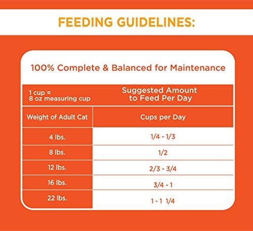 سعر Iams Proactive Health Original Adult Dry Cat Food