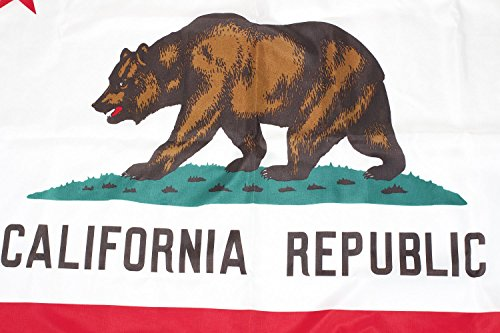 California Flag, Best Rated CA flag, 100% Made in USA, 3x5 California Republic State Flag Indoor/Outdoor with Superior Quality Nylon and Stitching from BBI Flags