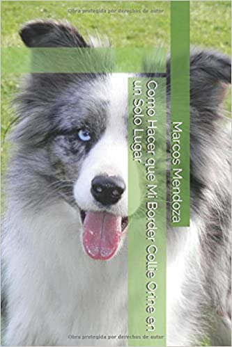 Como Hacer que Mi Border Collie Orine en un Solo Lugar (Spanish Edition): Marcos Mendoza: 9781983334610: Amazon.com: Books