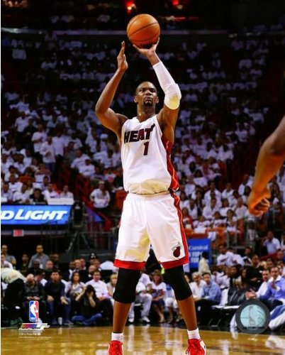 NBA Chris Bosh Miami Heat 2014 Playoff Action Photo (Size: 8