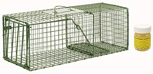 Standard Trap Door - Duke HD Medium Cage Trap Model 1109 Standard Single Door Cage Trap with 1oz Lenon Lure's Muskrat Super All Call Included