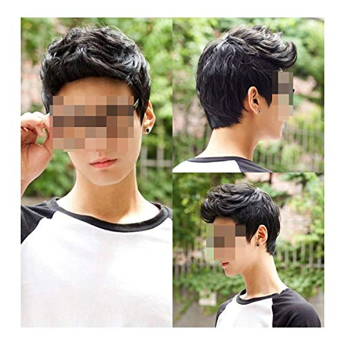 (Tuyhnm Handsome Sunshine Short Hair Wigs for Men Synthetic Hair Cosplay Curly Natural)