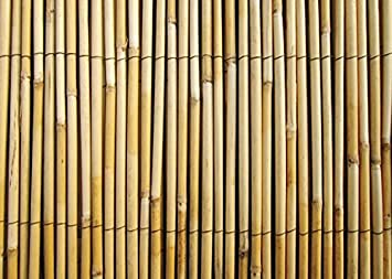 Amazon.com : Master Garden Products RF-6 Natural Reed Fence Woven ...