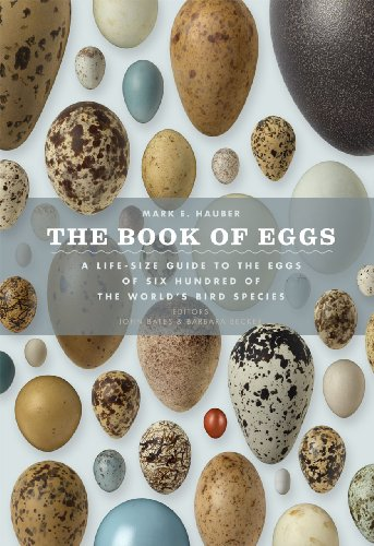 Bird Egg - The Book of Eggs: A Life-Size Guide to the Eggs of Six Hundred of the World's Bird Species