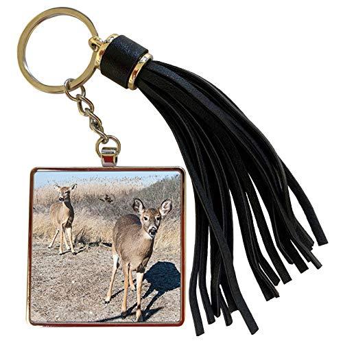 3dRose Roni Chastain Photography - Deer and Friend - Tassel Key Chain (tkc_203277_1)