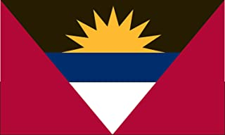 product image for Valley Forge Flag 2-Foot by 3-Foot Nylon Antigua and Barbuda Flag