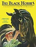 Big Black Horse (Picture Book)