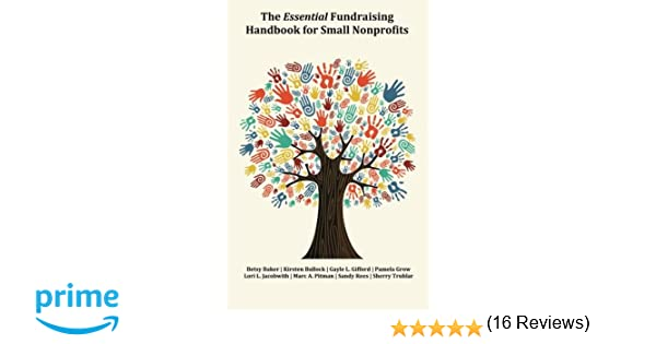 The Essential Fundraising Handbook for Small Nonprofits: Kirsten ...