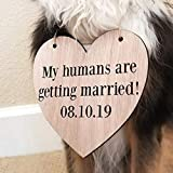 Custom Personalized My Humans are Getting Married Save the Date Pet Heart Wood Sign Dog Wooden Wedding Signage Engagement Photo Prop