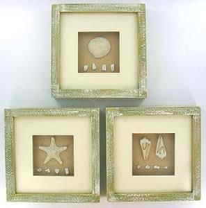 Sea shell star fish bathroom shadow box wall for Bathroom paintings amazon