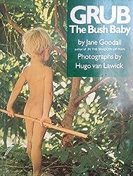 Grub, the Bush Baby