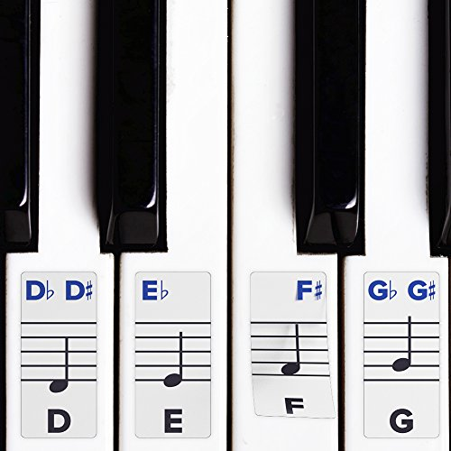 - Piano Stickers for Keys - Removable w/Double Layer Coating for 49/61 / 76/88 Keyboards