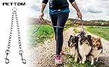 Pettom 4' Chain Chrome Plated Metal Dog Leash Dog