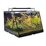 Lifegard Aquatics R800202 Full-View 5 Gallon Aquarium