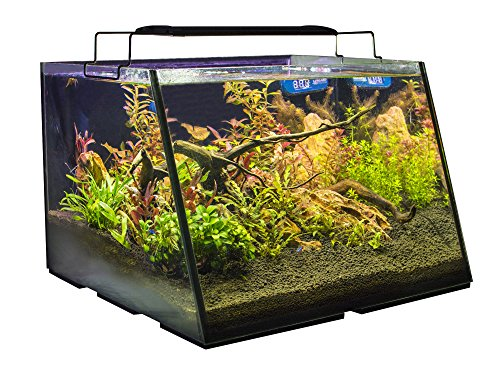 Lifegard Aquatics R800207 Full-View 7 Gallon Aquarium with Built-in Back Filter